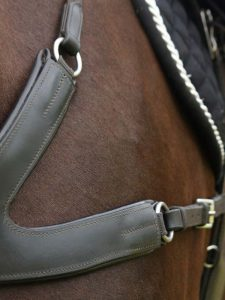Breastplates / Martingales