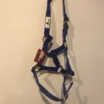 Royal Blue Pony Headstall