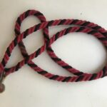 Red and Black Strong Horse lead